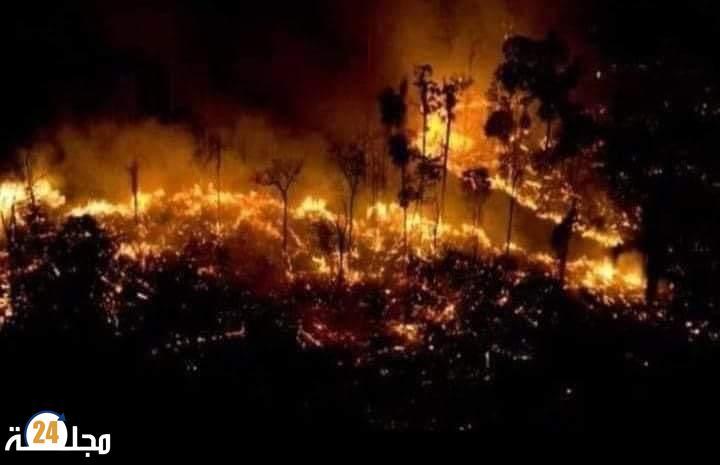 """اندلاع حريق مهول بإحدى غابات""""زايو"""""""